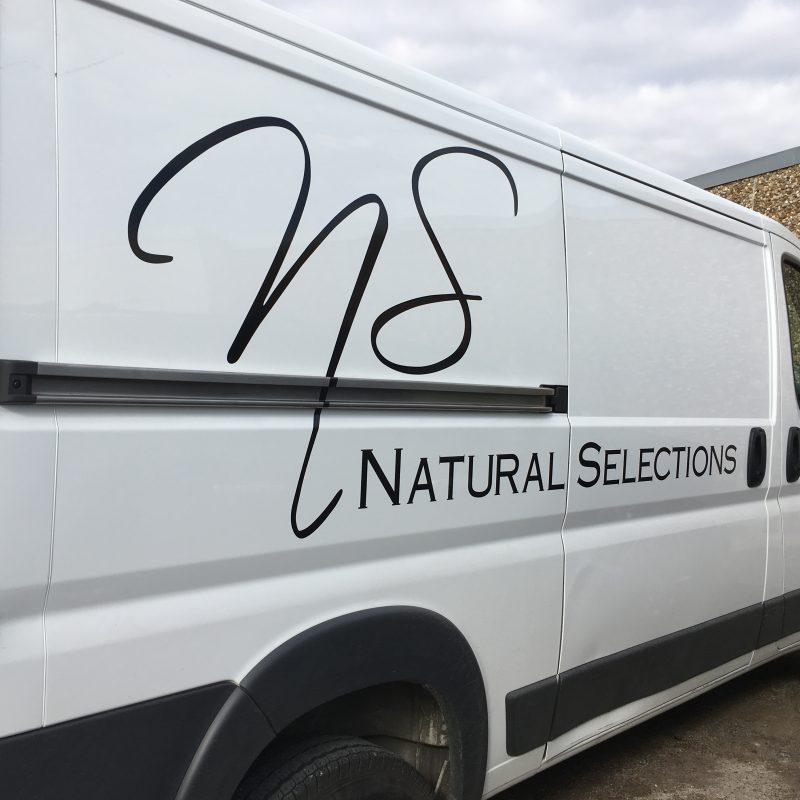 NaturalSelectionsVan
